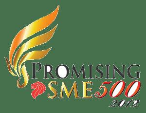 Promising SME 500 2011